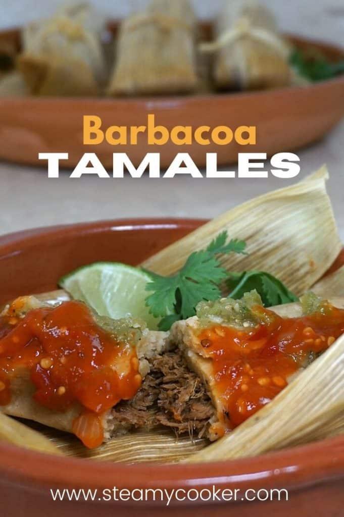 Instant Pot Beef Tamales